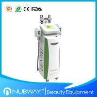 China Top quality CE cryolipolysis weight loss instrument body fat removal machine on sale