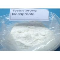 Quality 99% Testosterone Isocaproate Raw Steroid Powder Test Isocaproate 15262-86-9 muscle gain for sale