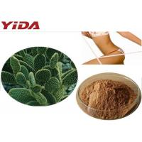 Quality Hoodia Gordonii Cactus Extract Weight Loss Steroids for sale