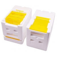 Quality Plastic Mating Breeding Box Beekeeping Queen Rearing for sale