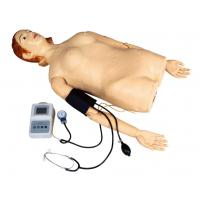Quality Female Half - Body Palpation Simulator with Blood Pressure Measurement for School , Hospital for sale
