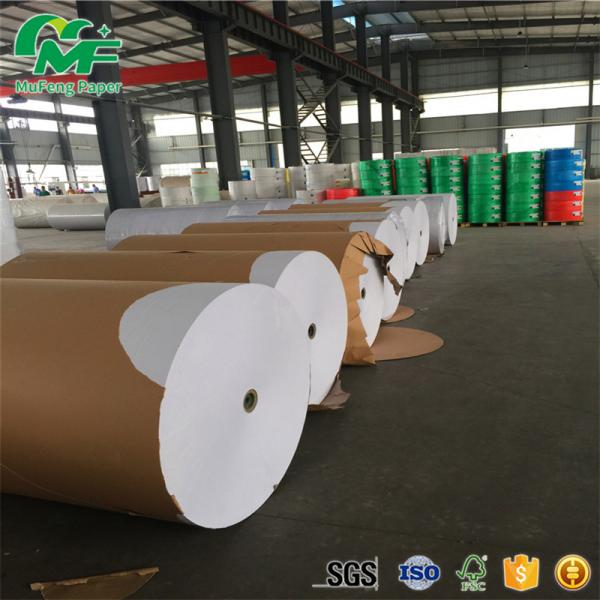 Buy Laminating Film Thermal Paper Jumbo Rolls , Jumbo Thermal Paper Virgin Pulp Style at wholesale prices