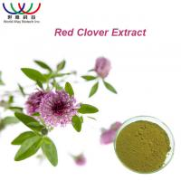Quality 100% Natural Red Clover Extract Isoflavone 8% 20% 40% HACCP HALAL KOSHER for sale