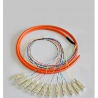 Quality 12 Cores Optical Fiber Patch Cord SC / UPC 1.5 Meter Fiber Optic Pigtail for sale