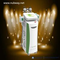 Buy cheap professional ! Freeze Cryolipolysis Anti Cellulite Fat Cavitation Rf Multifunction machine from wholesalers