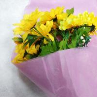 Quality 100% PP Non Woven Fabric Products Flower Gift Wrapping Soft Feeling Nontextile for sale