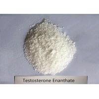 Quality 99% Bodybuilding Steroid Powder Testosterone Enanthate for Muscle Mass CAS 315-37-7 for sale