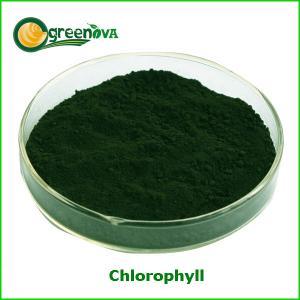 China Chlorophyll 15%,95% on sale