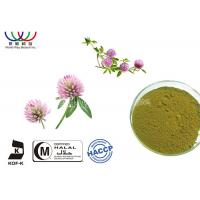 Quality EU Standard Red Clover Extract Anti - Cancer Green Powder Pharmaceutical Grade for sale