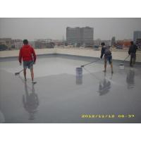 China Waterproof Polyaspartic Coating Projects-Roof Waterproof for Guangzhou Railway Stat on sale