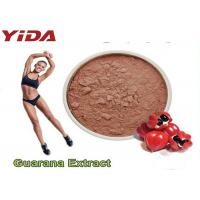 Quality Guarana Extract Natural Weight Loss Steroids 10% 20% Purity Reduced Appetite for sale