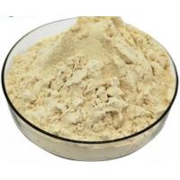 Quality Pure Organic Fresh Royal Jelly Lyophilized Powder 5.5% 10-HDA Honey Bee Products for sale