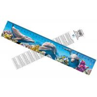 China Deep Images 3D Dolphin Cartoon Scale Lenticular Photo Printing / PET Plastic Straight Ruler on sale