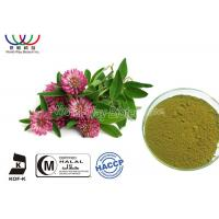 Quality Food Grade Natural Botanical Extracts , Red Clover Leaf Extract Relieve Menopausal Symtoms for sale