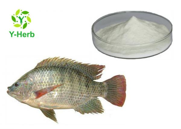 Buy Hydrolyzed Fish Skin Collagen Peptide Powder 90% 99% Pure For Marine Drink at wholesale prices