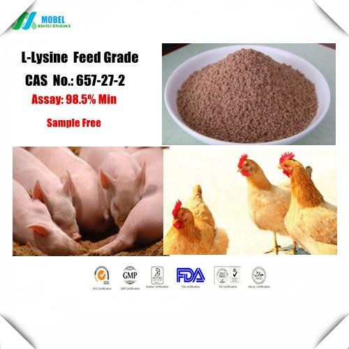 Buy Lysine CAS 657-27-2  Feed Grade Amino Acid for animal nutrition Free sample at wholesale prices