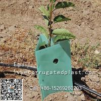 Quality UV resistant plastic corrugated corex sheet Tree guard for sale
