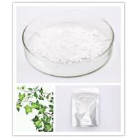 Quality Caulosapogenin Hederidi Hederagenin 465-99-6 White Crystalline Powder HPLC 98% for sale
