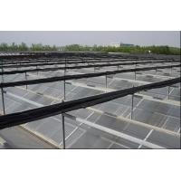Quality PC Sheet Commercial Outdoor Greenhouse , Cooling Pad Greenhouse Shading Systems for sale
