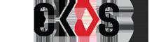 China Foshan Changqisheng Auto Parts Co., Ltd. logo
