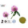 Natural Organic Red Clover Extract Balance Estrogen Pharmaceutical Grade