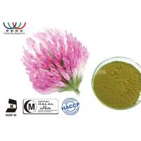 Quality Organic Red Clover Flower Extract , Natural Phytoestrogens Red Clover Isoflavones Extract for sale