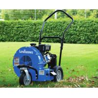 Buy cheap Energy Saving Landscaping Power Equipment Home Depot Leaf Blower Vacuum from wholesalers