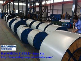 Shandong Baoshida Cable Co.,ltd