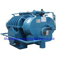 Quality Roots Type Natural Gas Blower Coal Gas Blower for sale