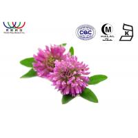 Quality Anti - Cancer Red Clover Extract  Dark Green Fine Powder EU Standard Pharmaceutical Grade for sale