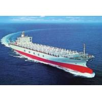 China MSK OOCL COSCO WANHAI HPL shipping agent in china on sale