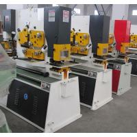 Quality Q35Y Combined Hydraulic ironworkerMachinery , Steel Hole Punch Machine for sale