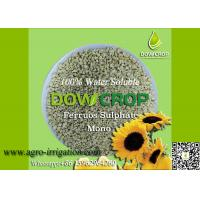 China DOWCROP HIGH QUALITY 100% WATER SOLUBLE MONO SULPHATE FERROUS 30% LIGHT GREEN GRANULAR MICRO NUTRIENTS FERTILIZER on sale
