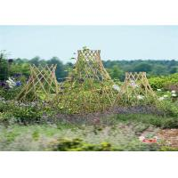 China Bamboo Garden Stakes Bamboo Trellis Fence Bamboo Garden Stakes For Plant Support on sale