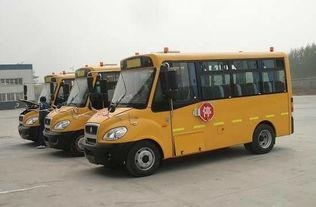 Buy Bus 40 -60 SeatS HOWO School Bus at wholesale prices