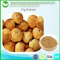 Hot Products Fig extract
