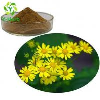 Buy cheap Climbing Groundsel Herb Extract from wholesalers