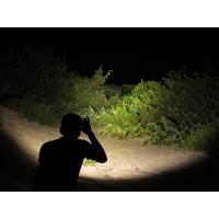 Buy cheap The Brightest Single AA Headlamp (300 Lumens) from wholesalers