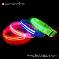 Nylon LED Dog Collar Red Pin Buckle Dog Collars And Leads